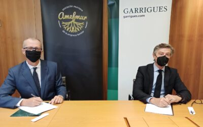 AMEFMUR y Garrigues seguirán impulsando iniciativas apra el asesoramiento y formación de las empresas familiares