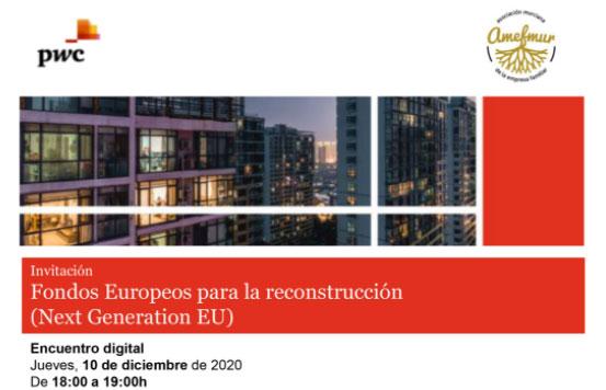 Encuentro digital sobre el Plan Europeo de Recuperación