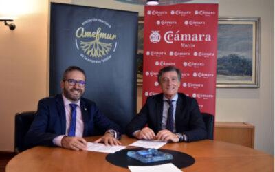 AMEFMUR y la cámara de comercio desarrollarán acciones conjuntas de apoyo a la empresas familiares